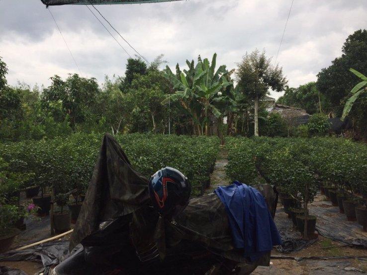 Cơ Khí Nguyễn Danh Cung Cấp Thợ Hàn Tại Nhà Chuyên Sửa Cửa Sắt, Cửa Kéo